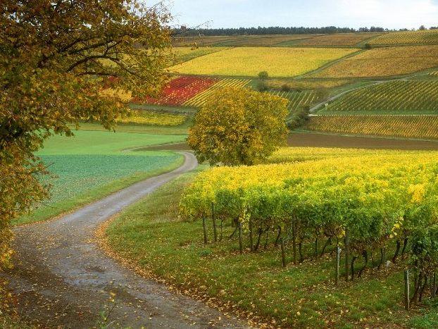 Ноябрь во франции красивая пора